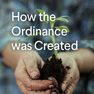 How the Ordinance was Created