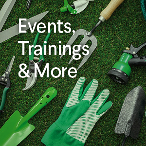 Events, Trainings & More